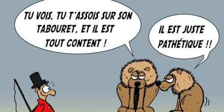 Le maire d'Angers: L'interdiction de la venue de cirques avec animaux à Angers