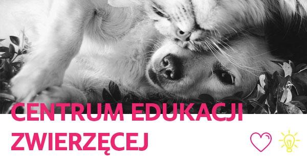 Petycja do Prezydenta Miasta Gliwic - Zygmunta Frankiewicza