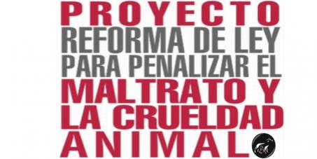 Presidenta Laura Chinchilla Miranda: APRUEBEN YA el Proyecto de ley 18298 Contra el Maltrato Animal - Costa Rica