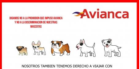 Avianca no discrimine los perros