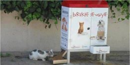 Δημόσιες ταϊστρες αδέσποτων ζώων στους Δήμους Θεσσαλονίκης, Αθηνών