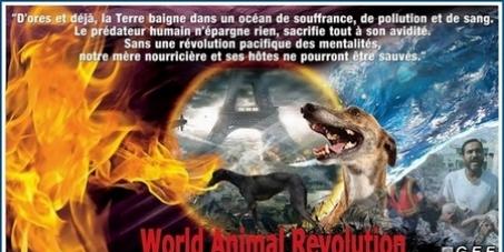UNESCO RECONNAISSANCE DE L'ANIMAL ETRE SENSIBLE