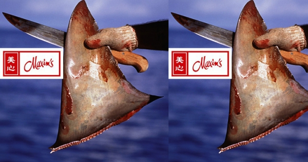 Maxim's Restaurants in Hong Kong: Please STOP Selling Unsustainable Shark Fin!