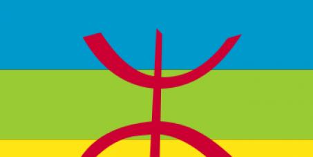 Introduire la langue TAMAZIΓT dans le moteur de recherche google