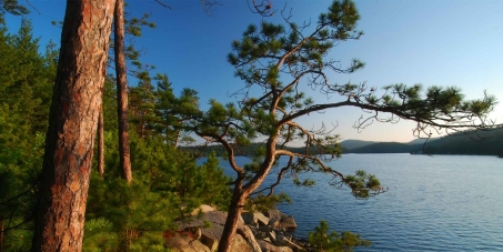 Save Temagami