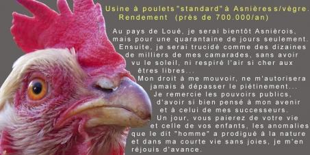 A Monsieur le Ministre de l'Agriculture et Monsieur le Préfet de la Sarthe.: Ne pas autoriser l'ouverture d'un élevage intensif au coeur du pays de Loué