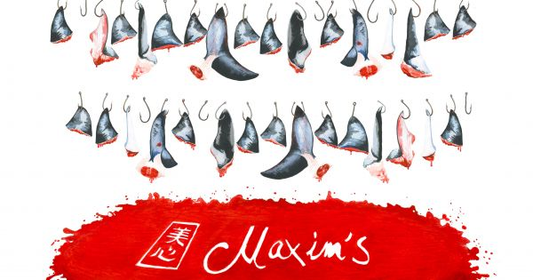 Maxim's Restaurants in Hong Kong: STOP Selling Unsustainable Blue Shark Fin!