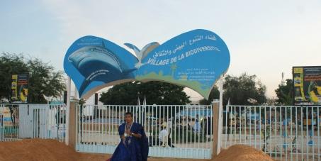 Protéger et valoriser les espaces publics dans la ville de Nouakchott.
