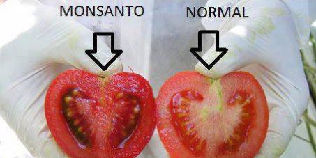 Les Tunisiens veulent connaître l'origine des produits qu'ils consomment !!
