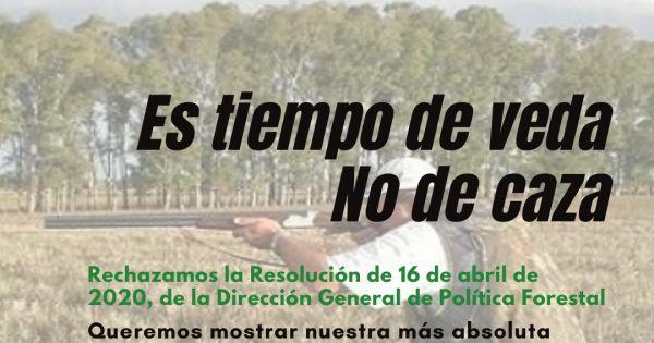 Contra el permiso para cazar en tiempo de veda en Extremadura