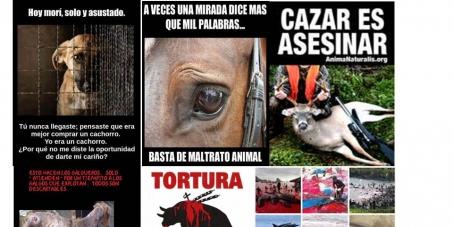 Prisión a los maltratadores de animales y  prohibición de caza y explotación de los animales en el mundo