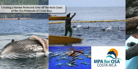 Create a Marine Protected Area off the Osa Peninsula of Costa Rica