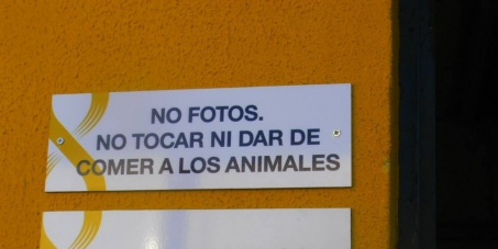 QUEJA POR LA PROHIBICIÓN DEL ZOOSANITARIO DE SEVILLA DE HACER FOTOS A LOS ANIMALES DENTRO DE LAS JAULAS