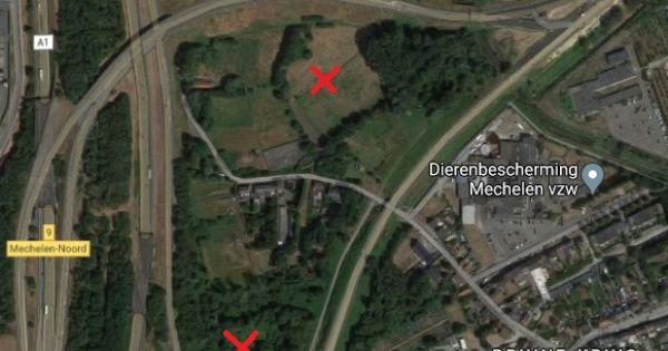 Stop het verlies van natuur en open ruimte in Mechelen, voor het te laat is!