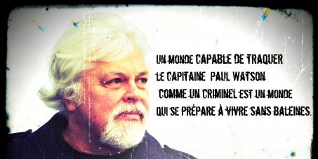 Pour que la France accueille Paul WATSON