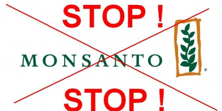 Petition for the dismantling of Monsanto