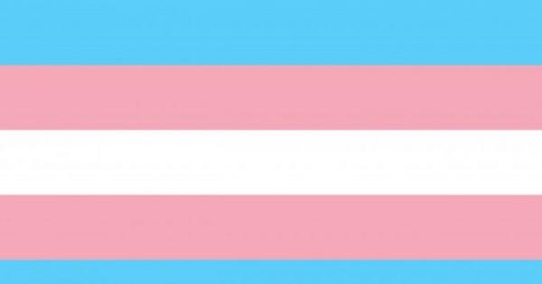 """Petición para modificar inmediatamente el Decreto de """"Pico y Género"""" en Bogota"""