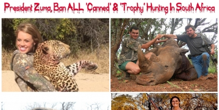 Mr Jacob Zuma, President of South Africa: Ban ALL Forms of 'Canned' & 'Trophy' Hunting In South Africa