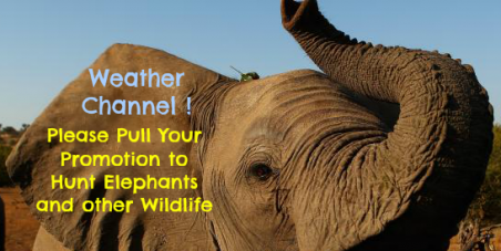 """WE DID IT! The Weather Channel took down their article, """"17 Animals to Hunt"""" THANK YOU advocates!"""