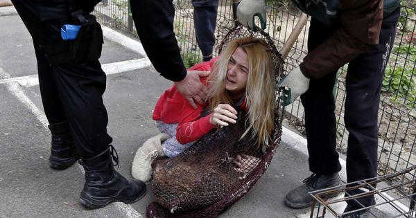 Presedintelui Romaniei, Guvernului Romaniei, Parlamentului Romaniei: STOPAŢI eutanasierea cainilor, in Romania!
