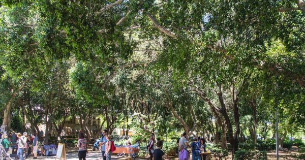 Δημοτικό Συμβούλιο Ηρακλείου: Υπογράφουμε για την Προστασία του Πάρκου Γεωργιάδη