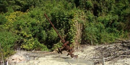 Por el cese de la explotación petrolera en el Parque Nacional Calilegua