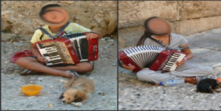 STOP THE ROMA FROM ABUSING PUPPIES