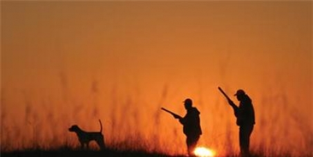 Προς Υπουργό Αγροτικής Ανάπτυξης: Μείωση κυνηγετικής περιόδου για το έτος 2014 - 2015
