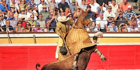 San Sebastián: Keep The Ban On Bullfighting - Do Not Give In To Sadists