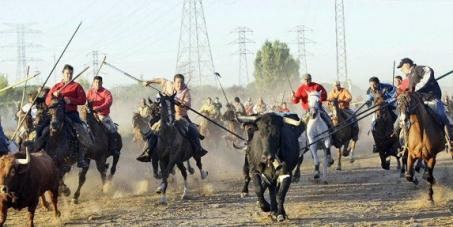 Declara a Tordesillas un lugar pérfido para la humanidad y fatídico para los animales indefensos
