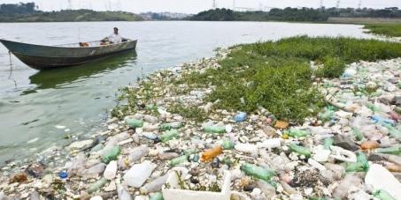 Prefeito Hadad , São Paulo: Queremos algum projeto para a limpeza da represa billings !