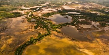 Ayudemos a salvar el refugio vida silvestre caño negro en Costa Rica, no a la deforestacion, no al drenado de humedales.