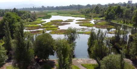 Ayuda a salvar el Parque Ecológico de Xochimilco, DF.: Firma la petición y difunde