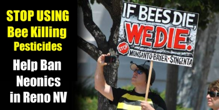 Reno Nevada City Council: Ban the use of Bee Killing Pesticides on City Property