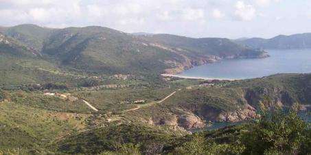 Sauvons la biodiversité des ZNIEFF 1 en Corse des appétits immobiliers !