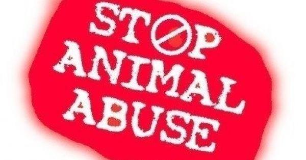 Ψήφισμα προς τον Πρωθυπουργό της Ελλάδας Βάλτε τέλος στην κακοποίηση των ζώων .