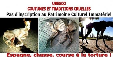 Irina BOKOVA, Directrice Générale UNESCO: Contre l'inscription au PCI de la chasse avec les lévriers en Espagne
