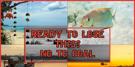 Don't Let Our Corals Become Coal !