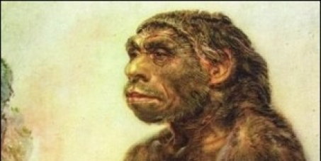 Homo sapiens: Все люди - родственники!