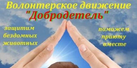 Главе администрации Заводского р-на г. Саратов Каргину А. П. : Сохраните единственный приют города