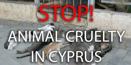 Stop Animal Cruelty in Cyprus