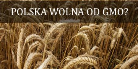 1 milion za wprowadzeniem przez Rząd RP autonomicznych przepisów (ustawowych), które trwale i skutecznie zabezpieczą Polskę przed uprawami roślin genetycznie zmodyfikowanych (GMO).