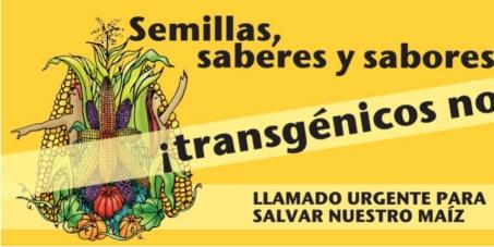 No al maíz transgénico en Costa Rica