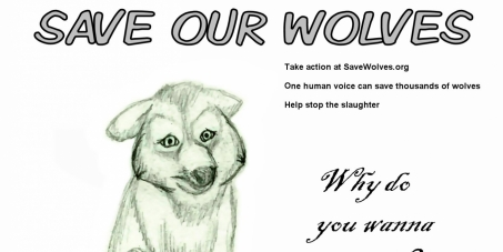 Stop The Abuse And torture Of Wild and Domestic Animals