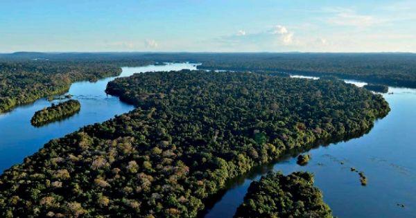Deputados da Assembléia Legislativa de Rondônia: apoiem as novas áreas protegidas do Estado na Amazônia!