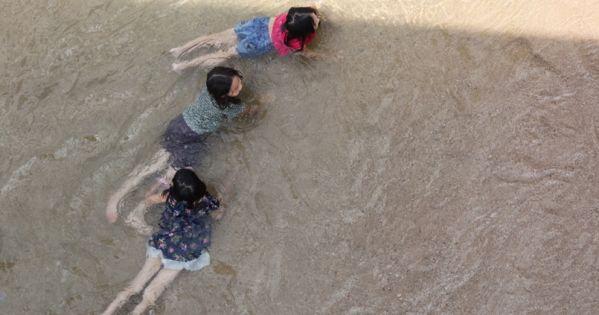 영주댐 담수중단 No Dam, Yes Flowing Sand River