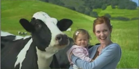 Stop GMO's in New Zealand Dairy !