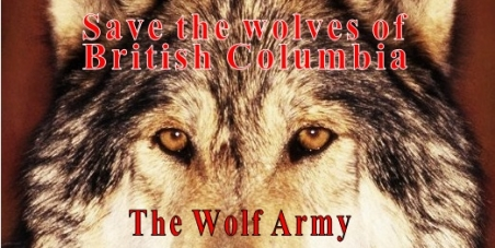 Stop the killing of wolves to protect Mountain- and Woodland Caribou in British Columbia.