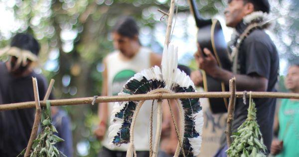 Criação do Parque Ecológico YARY TY (CEYTY) e Memorial da Cultura Guarani.