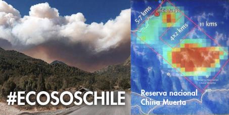 S.O.S ECOLOGICO SE QUEMA EL BOSQUE NATIVO EN CHILE!!